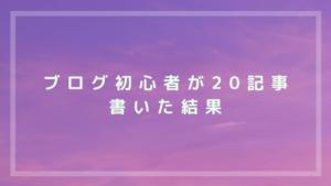 ブログ初心者が20記事書いた結果【実録】