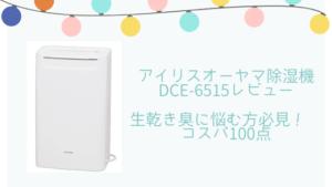 【アイリスオーヤマ 衣類乾燥除湿機DCE-6515レビュー】コスパ100点