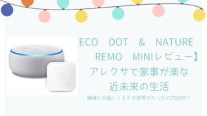【Eco Dot & Nature Remo miniレビュー】アレクサで家事が楽な近未来の生活